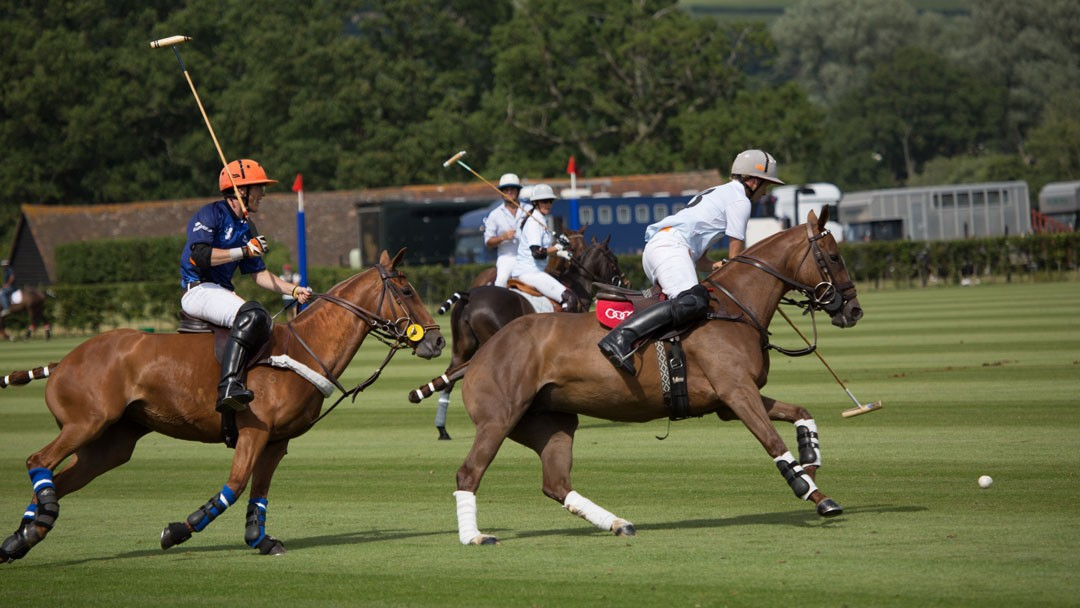 The Halcyon Gallery Royal Polo Day 2015