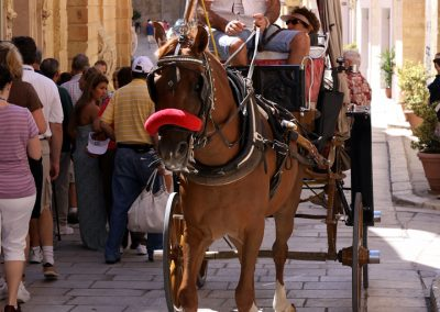 VistaJet Malta | Horse and Cart