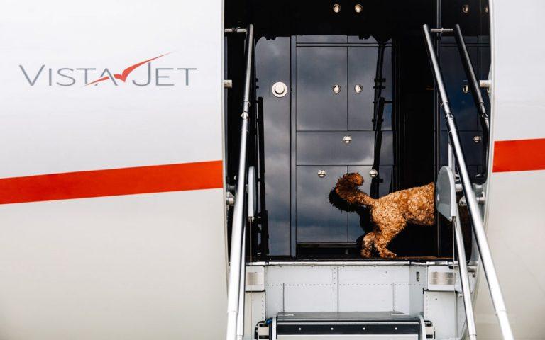 VistaJet Launches Global Pet Travel Program