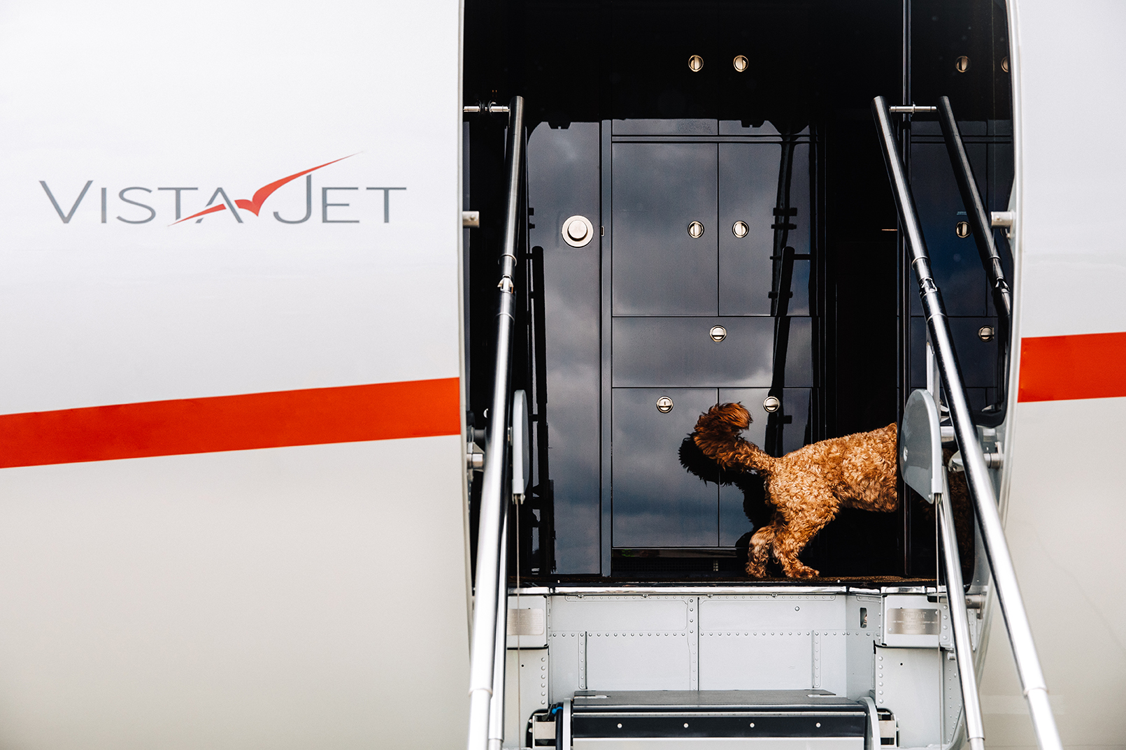 vistajet-launches-global-pet-travel-program