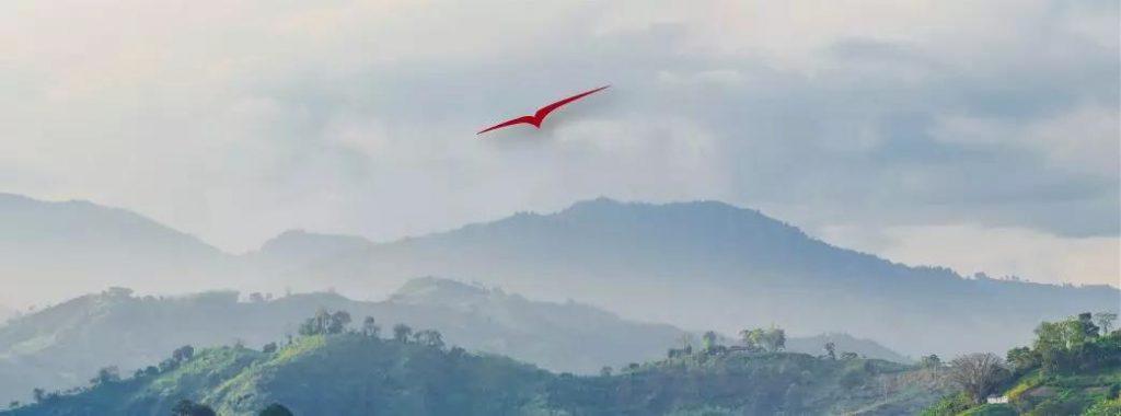 私人飞行环球-哥伦比亚- 维思达公务机