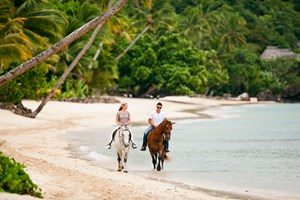 activity-horseback-riding-1-3cz9n9qjwcnr43ndd6p88w.jpg